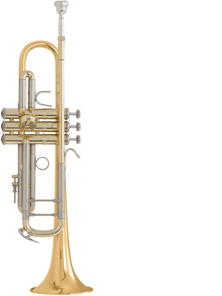 Trompeta Sib BACH modelo LT180ML tudel standard GOLDMESSING