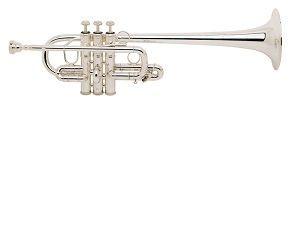 Trompeta Mib/Re BACH modelo 189 plateada