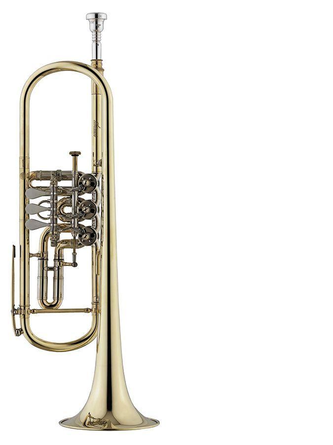 Trompeta cilindros STOMVI Titan modelo 5491