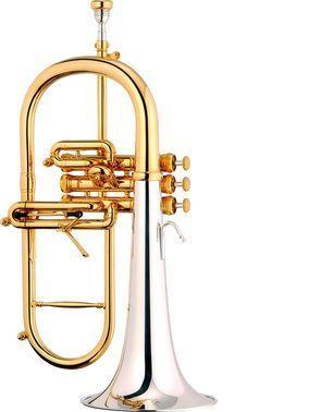 Fliscorno STOMVI Master modelo 5981