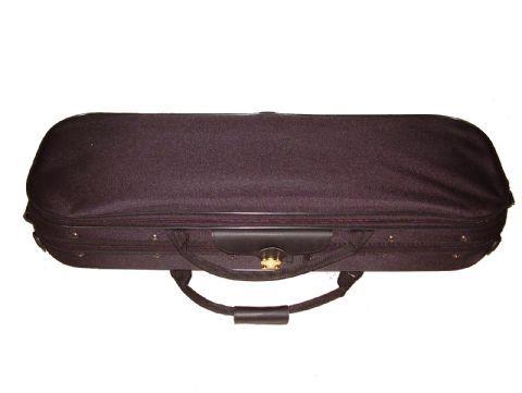 Estuche violin modelo ASN11