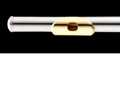 Flauta AZUMI modelo AZ-Z1REGP1