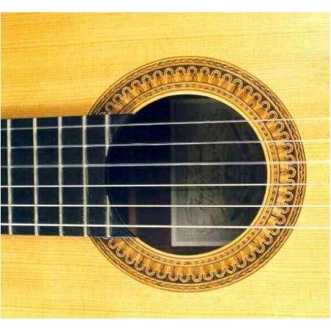 Guitarra clásica ALHAMBRA modelo José Mª Vilaplana Exótico