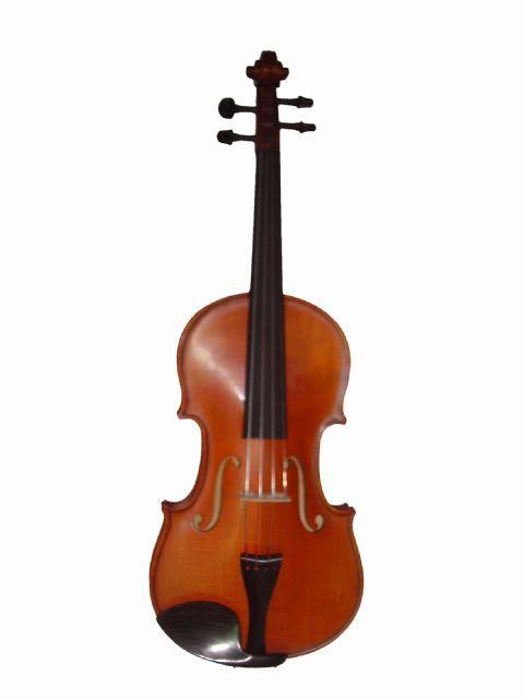Violin 1/2 GLIGA modelo GEMS II