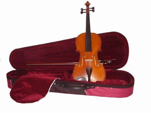 Violin 1/2 GLIGA modelo GENIAL I