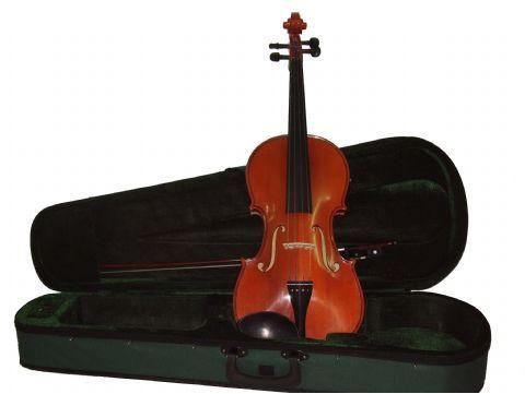 Viola 13
