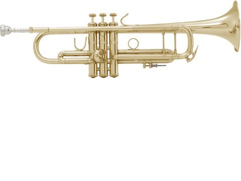 Trompeta Sib BACH modelo LT180ML tudel no standard LACADA