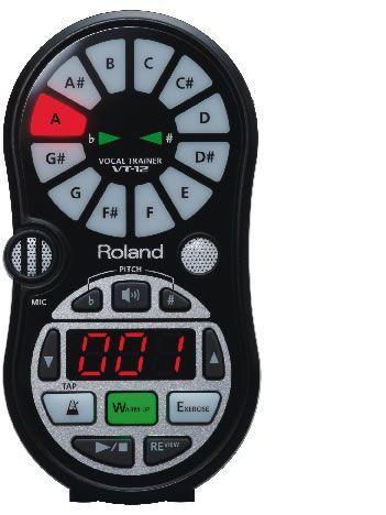 Grabador digital ROLAND modelo VT-12