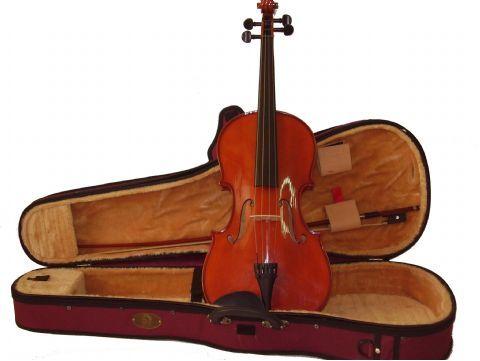 Viola 15,5