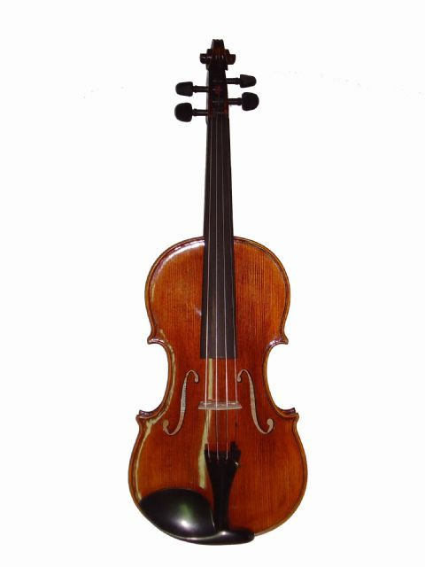 Violin 4/4 STENTOR modelo MESSINA