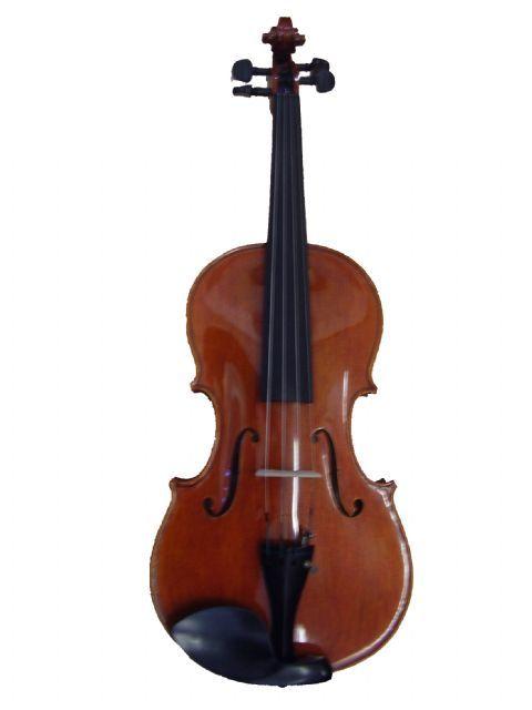Viola 16,5