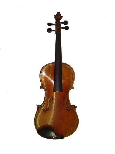 Viola 16 1/8