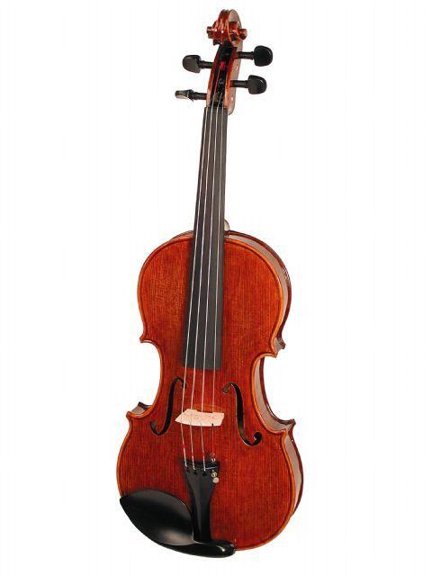 Violin 4/4 STENTOR modelo ELYSIA