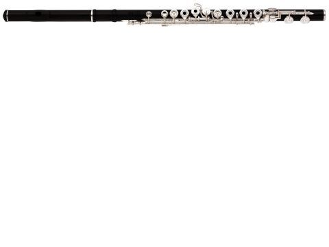Flauta travesera de madera YAMAHA modelo YFL 874 W
